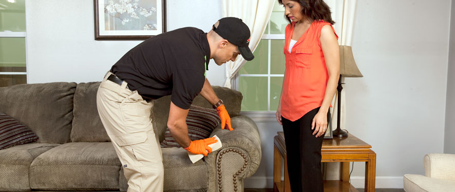 Sharpstown, TX carpet upholstery cleaning